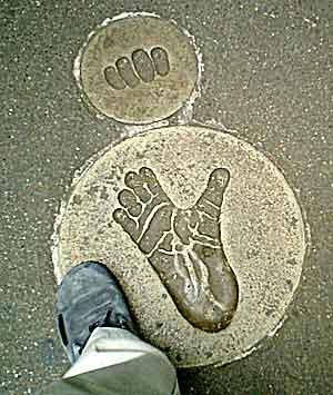 060506 ゴリラの足形と、たますな足