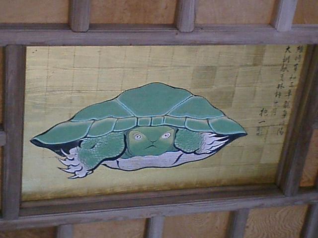 041127八方睨みの亀in奥津宮